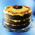 Best Chocolate Peanut Butter Cake