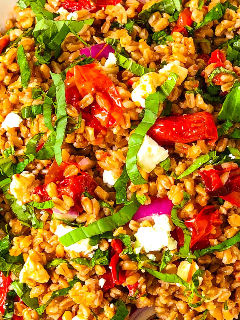 Closeup overhead view of Farro Tomato Salad with shredded basil and mint with feta cheese scattered over the top