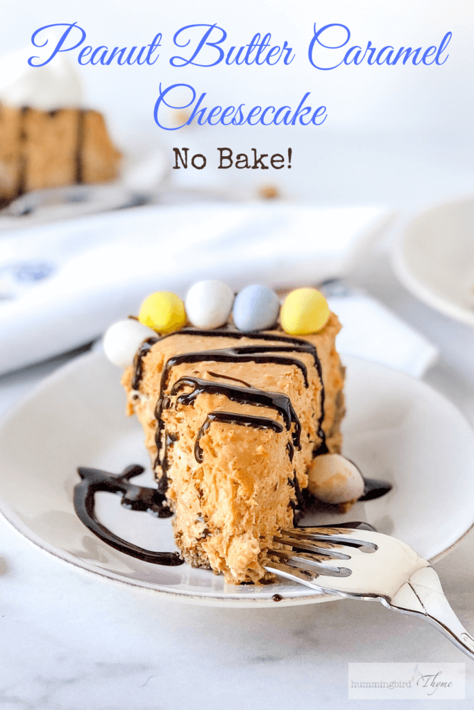 Salted peanut butter caramel cheesecake, a no-bake pie with 2-ingredient chocolate cookie crust, simple peanut butter caramel filling, and candy on top!
