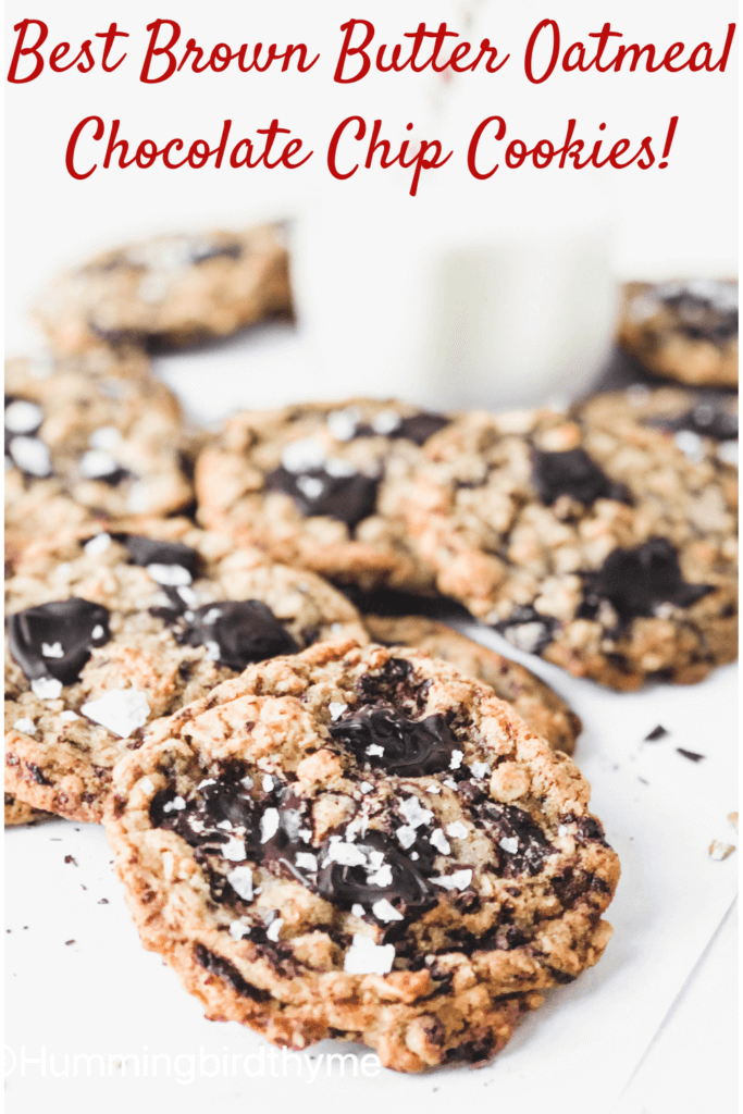 best oatmeal chocolate chip cookies recipe